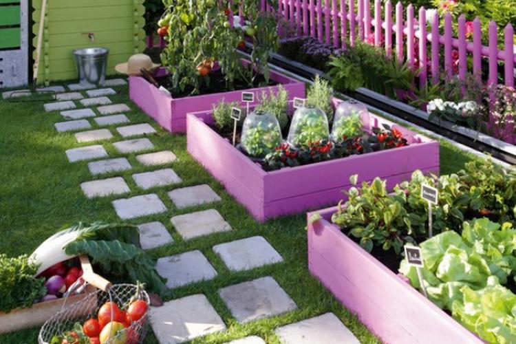 come-fare-un-orto-in-giardino-orto-giardino.png