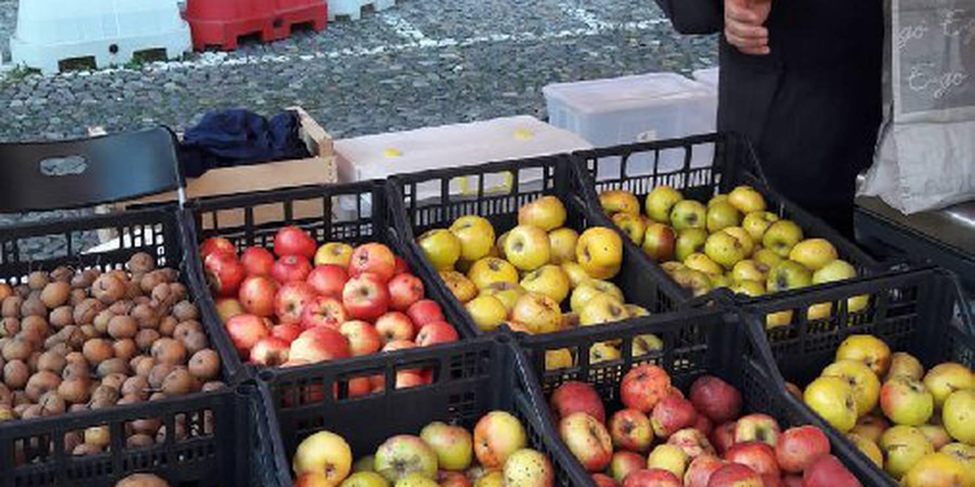 foto_mercato_contadino_di_guastalla_(3).jpg