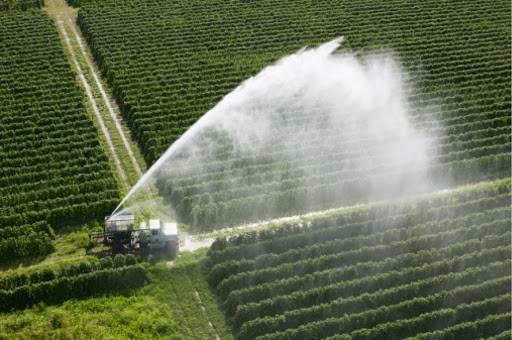 irrigazione campi.jpg