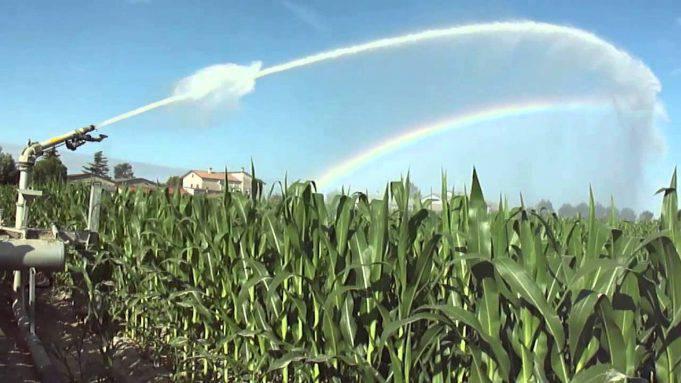irrigazione campi 3.jpg