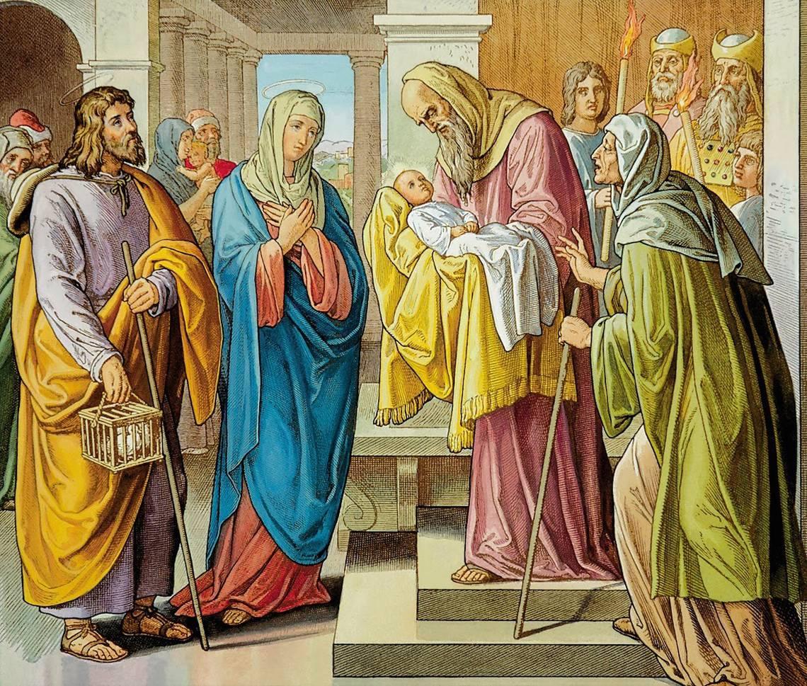 presentazione gesu al tempio candelora.jpg